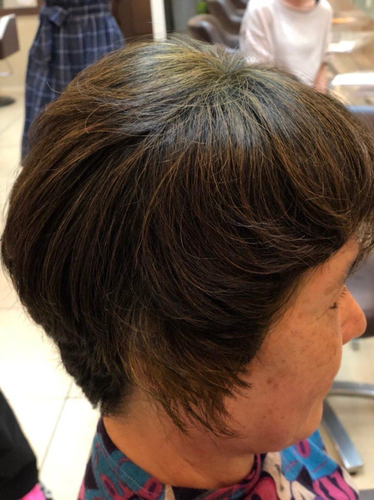 ヘナ ipmケイティ ハリコシ ツヤ ふんわり ボリューム 立ち上がり 髪質改善
